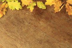 Pagina con le foglie di autunno gialle contro un fondo di vecchia t Fotografia Stock