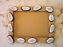 Pagina con le pietre con gli scheletri delle foglie Fotografie Stock Libere da Diritti