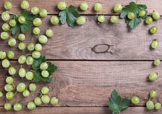 Pagina dall'uva spina delle bacche immagini stock