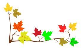 Pagina dalle foglie di acero illustrazione di stock