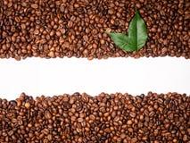 Pagina dei chicchi di caffè Fotografia Stock