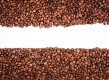 Pagina dei chicchi di caffè isolati Fotografia Stock