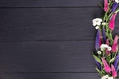 Pagina dei fiori, bordi neri del fondo immagini stock libere da diritti