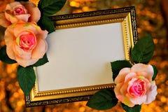 Pagina dei fiori rosa su un fondo festivo romantico delle luci del bokeh Il festival per le foto, pitture o testo importante, immagini stock libere da diritti