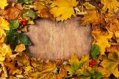 Pagina dei fogli di autunno Immagini Stock Libere da Diritti