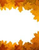 Pagina dei fogli di autunno su una priorità bassa bianca Immagine Stock Libera da Diritti