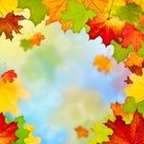 Pagina dei fogli di autunno variopinti Fotografia Stock Libera da Diritti