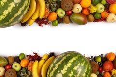 Pagina dei frutti esotici fotografia stock libera da diritti