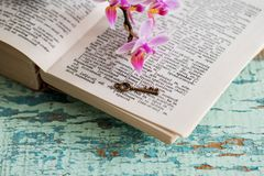 Pagina del dizionario con la parola Fotografia Stock Libera da Diritti