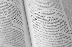 Pagina del dizionario con la parola nel fuoco Fotografie Stock Libere da Diritti