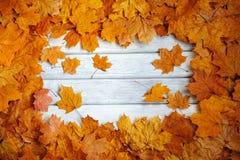 Pagina dell'autunno, foglie gialle su una superficie bianca immagini stock