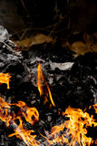 Pagina della combustione del fuoco sulla carta Fotografia Stock