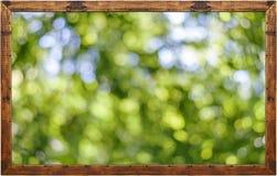 Pagina della foto con il fondo verde del bokeh della foresta Fotografie Stock