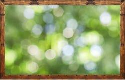 Pagina della foto con il fondo verde del bokeh della foresta Fotografia Stock Libera da Diritti