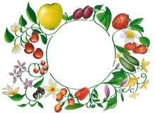 Pagina della frutta e delle verdure Immagini Stock Libere da Diritti