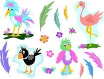 Pagina della miscela degli uccelli e delle piume Immagine Stock