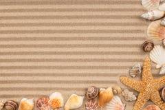 Pagina delle conchiglie e delle stelle sulla sabbia a strisce Immagini Stock