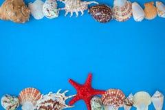 Pagina delle coperture di varia dimensione e delle stelle marine rosse Fotografia Stock Libera da Diritti