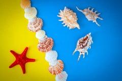 Pagina delle coperture di varia dimensione e delle stelle marine rosse Immagini Stock