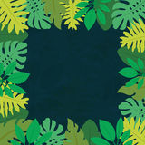 Pagina 1 delle foglie tropicali Immagine Stock