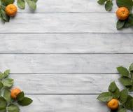 Pagina delle foglie verdi e dei mandarini sui bordi d'annata di legno immagini stock