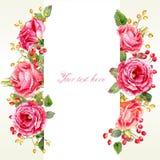 Pagina delle rose e delle bacche dell'acquerello illustrazione di stock