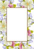 Pagina di alcuni fiori Per progettazione delle carte, inviti, accoglienti per il compleanno, nozze, partito, festa, celebrazione, Fotografia Stock