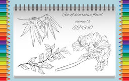 Pagina di coloritura con le immagini isolate dei fiori Fotografia Stock Libera da Diritti