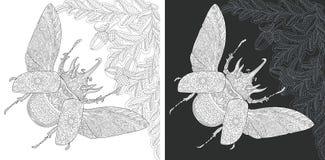 Pagina di coloritura dell'insetto illustrazione vettoriale