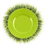 Pagina di erba con il piatto verde Fondo dell'alimento biologico Fotografia Stock