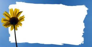 Pagina di un fiore della sorgente Immagine Stock Libera da Diritti