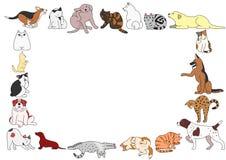 Pagina di varie posizioni dei gatti e dei cani Immagine Stock