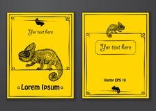 Pagina disegnata a mano del camaleonte Immagini Stock Libere da Diritti