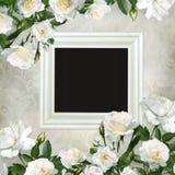 Pagina e confini delle rose bianche su un bello fondo d'annata Fotografie Stock