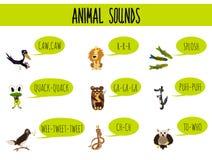 Pagina educativa variopinta del fumetto dei bambini per i libri per bambini e le riviste sul tema dello studio sui suoni di selva royalty illustrazione gratis