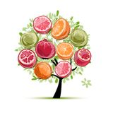 Pagina fatta dai frutti, schizzo per la vostra progettazione Immagini Stock