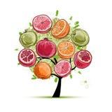 Pagina fatta dai frutti, schizzo per la vostra progettazione Fotografia Stock Libera da Diritti