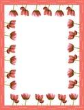 Pagina fatta dai tulipani rossi Immagini Stock Libere da Diritti