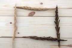 Pagina fatta dei frumenti differenti sui pavimenti di legno Immagine Stock
