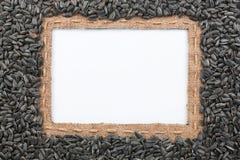 Pagina fatta di tela da imballaggio con il briciolo di bugie dei semi di girasole e della linea Fotografia Stock