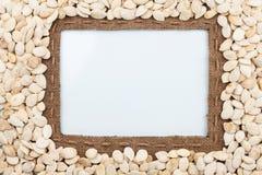 Pagina fatta di tela da imballaggio con le bugie dei semi di zucca e della linea bianche Fotografia Stock Libera da Diritti