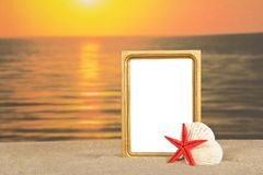 Pagina, insieme delle conchiglie del mare sulla sabbia Immagini Stock