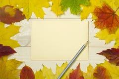 Pagina le foglie di autunno con la busta beige su fondo di legno Modello variopinto per progettazione immagini stock