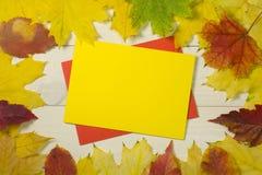 Pagina le foglie di autunno con la busta di yello su fondo di legno Modello variopinto per progettazione fotografia stock libera da diritti