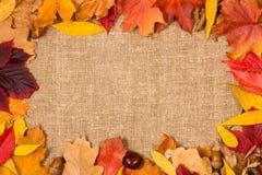 Pagina nello stile di autunno Fotografia Stock