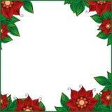 Pagina per il vostro testo con fondo floreale Cartolina d'auguri, invito, insegna Illustrazione di vettore Fotografia Stock