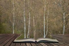 In pagina's van open boek, verhaal het vertellen concept royalty-vrije stock afbeelding