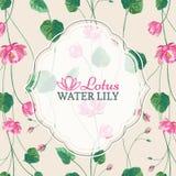 Pagina su fondo dei fiori di loto rosa immagini stock libere da diritti