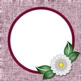 Pagina una foto del fiore Fotografia Stock