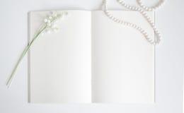 Pagina vuota del vecchio libro con lo spazio della copia Immagini Stock Libere da Diritti